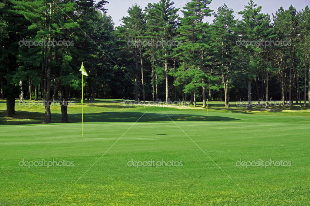 View of a golf green with the flag on the left side — Stock Photo #6720224