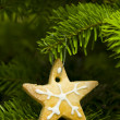 Star shape short bread cookie - Stock Photo