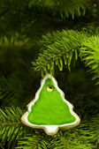 Tree shape short bread cookie — Stock Photo