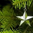 Star shape Christmas tree decoration — Stock Photo #6190214