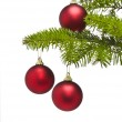Three red decoration balls in Christmas tree branch — Stock Photo #6202631
