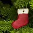 Present sock shape short bread cookie in Christmas tree — Stock Photo