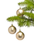 Three golden decoration balls in Christmas tree branch — Stock Photo