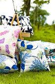 Vacker kudde visas på gräsmattan i en trädgård — Stockfoto