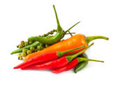 Different kinds of hot pepper — Stock Photo