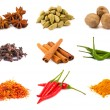 Collection of various spices — Stock Photo