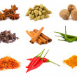 Stock Photo: Collection of various spices