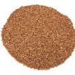 Buckwheat isolated on a white — Stock Photo