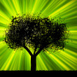 Tree with green burst background. EPS 8 — Stockvectorbeeld