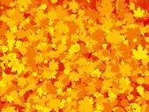 カラフルな暖かい秋の葉の背景。eps 8 — ストックベクタ
