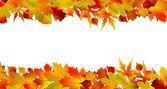 Frontière automne coloré, fait à partir des feuilles. eps 8 — Vecteur