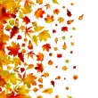 Autumn leaves, background. EPS 8 — Stock Vector