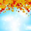 Autumn leaves on blue sky. Seasonal background. EPS 8 vector file included — Stock Vector