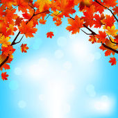 Red and yellow leaves against bright sky. EPS 8 — Stock Vector