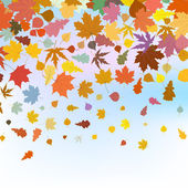 Beautiful autum leaves against sky. EPS 8 — Stock Vector