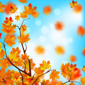 Red and yellow leaves against blue sky. EPS 8 — Stock Vector