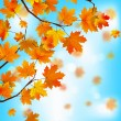 Red and yellow leaves against blue sky. EPS 8 — Imagens vectoriais em stock