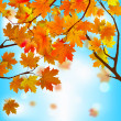 Royalty-Free Stock Vector Image: Red and yellow leaves against blue sky. EPS 8