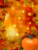 Autumn Pumpkins and leaves. EPS 8 vector file included — Stock Vector