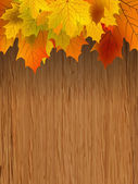 Fall leaves making border on wooden. EPS 8 — Stock Vector