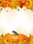 красочные осенние карты листья с тыквой. eps 8 — Cтоковый вектор