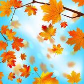 Bordo de árvore outono parte contra o eps azul 8 — Vetorial Stock