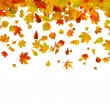 Vector de stock : Background of autumn leaves. EPS 8