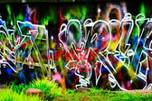 Graffity on the concrete fence — Stock Photo