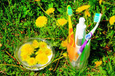 Tooth brushes, paste and skin cream in the glass on the grass — Stock Photo