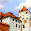 Very old castle — Stock Photo #6360213
