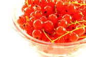 Red currant in the glass bowl — Stock Photo