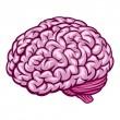 fumetti di cervello umano disegno — Vettoriale Stock