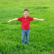 Little boy on green meadow — Stock Photo
