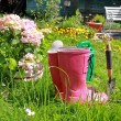 Pink wellingtons in the Spring garden - Stockfoto