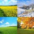 Royalty-Free Stock Photo: 4 seasons collection