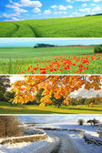 4 mevsim koleksiyonu — Stok fotoğraf