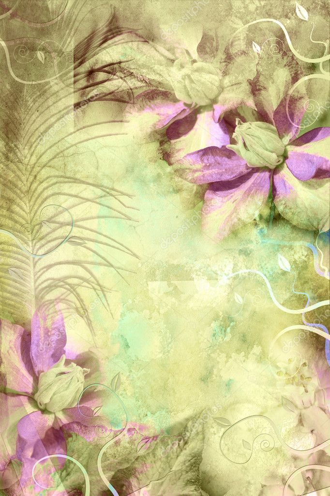 Beautiful grungy background with clematis — Stock Photo #6363696