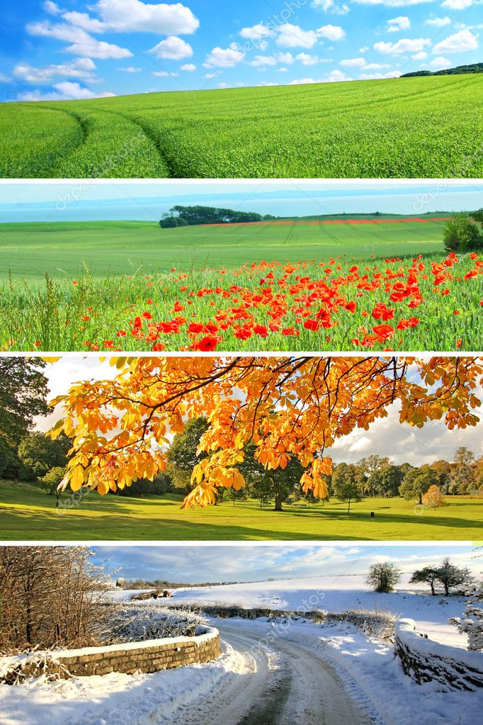 4 seasons collection, vertical  Stock Photo #6364825