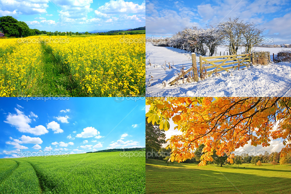 4 seasons collection, horizontal  — Stock Photo #6364856