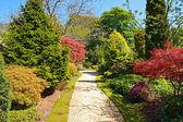Krásný jarní zahrada — Stock fotografie