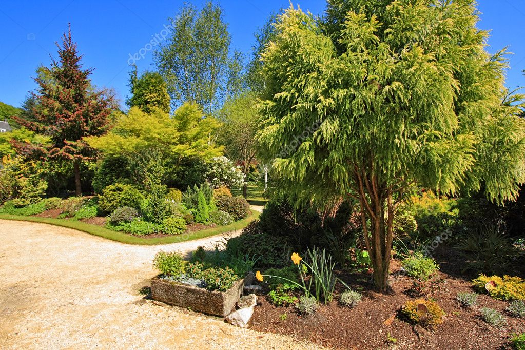 Beautiful Spring garden on sunny day  Stock Photo #6377005