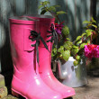 Pink wellingtons in front of an old shed — Stock Photo