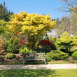 Stock Photo: Beautiful garden in Spring time