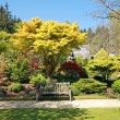 Beautiful garden in Spring time — Stock Photo #6408789