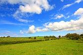 Schotse landschap met wolken in de hemel — Stockfoto