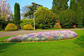 Beautiful park with 3 colour flowers — Stock Photo