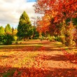 Autumn in Scotland — Stock Photo #6410626