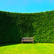 Stockfoto: Garden hedges with bench
