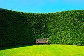 сад хеджирования с скамейке — Стоковое фото