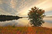 Akşam göle — Stok fotoğraf